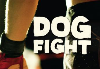 Dog Fight: when 'Fight Club' comes to Britain's streets