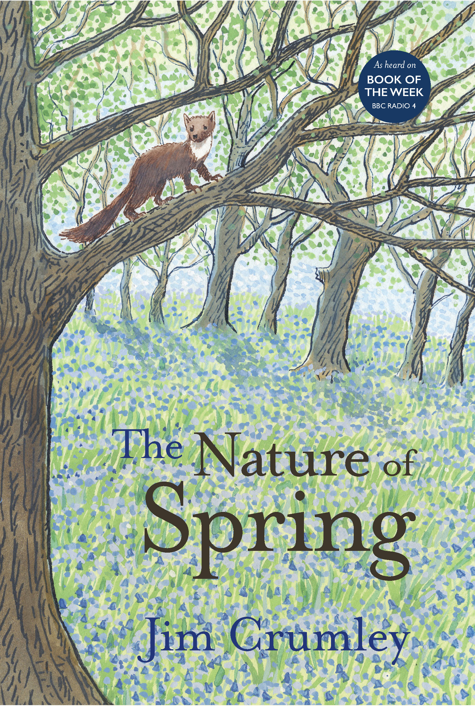 The Nature of Spring (Paperback)