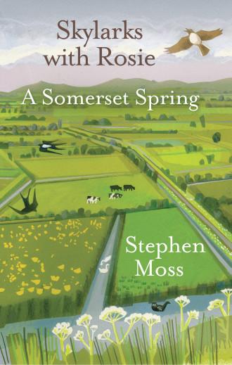 Skylarks with Rosie: A Somerset Spring