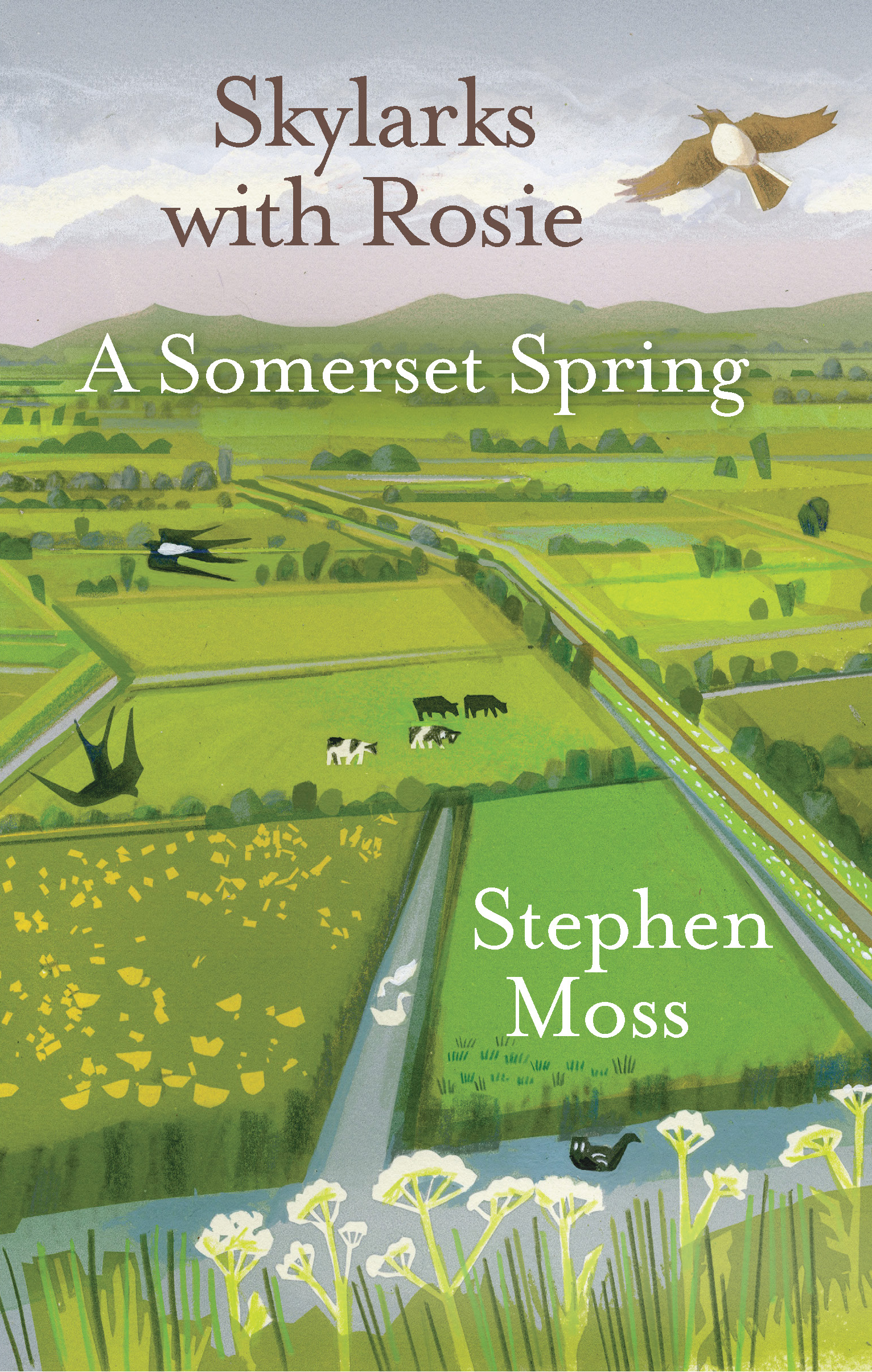 Skylarks with Rosie: A Somerset Spring